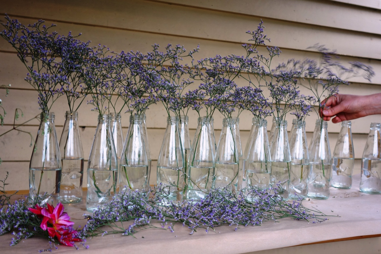 Purple haze flowers in upcycled bottles