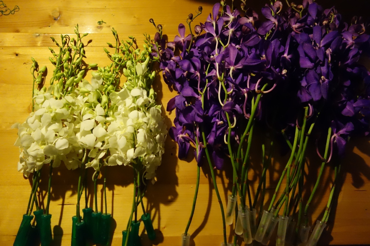 Purple and white Singapore orchids