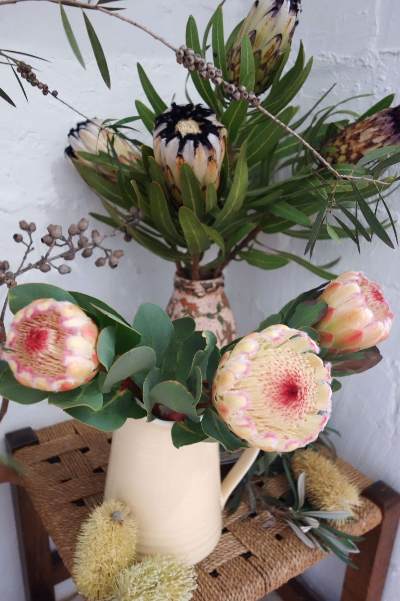 Cream mink and susara proteas