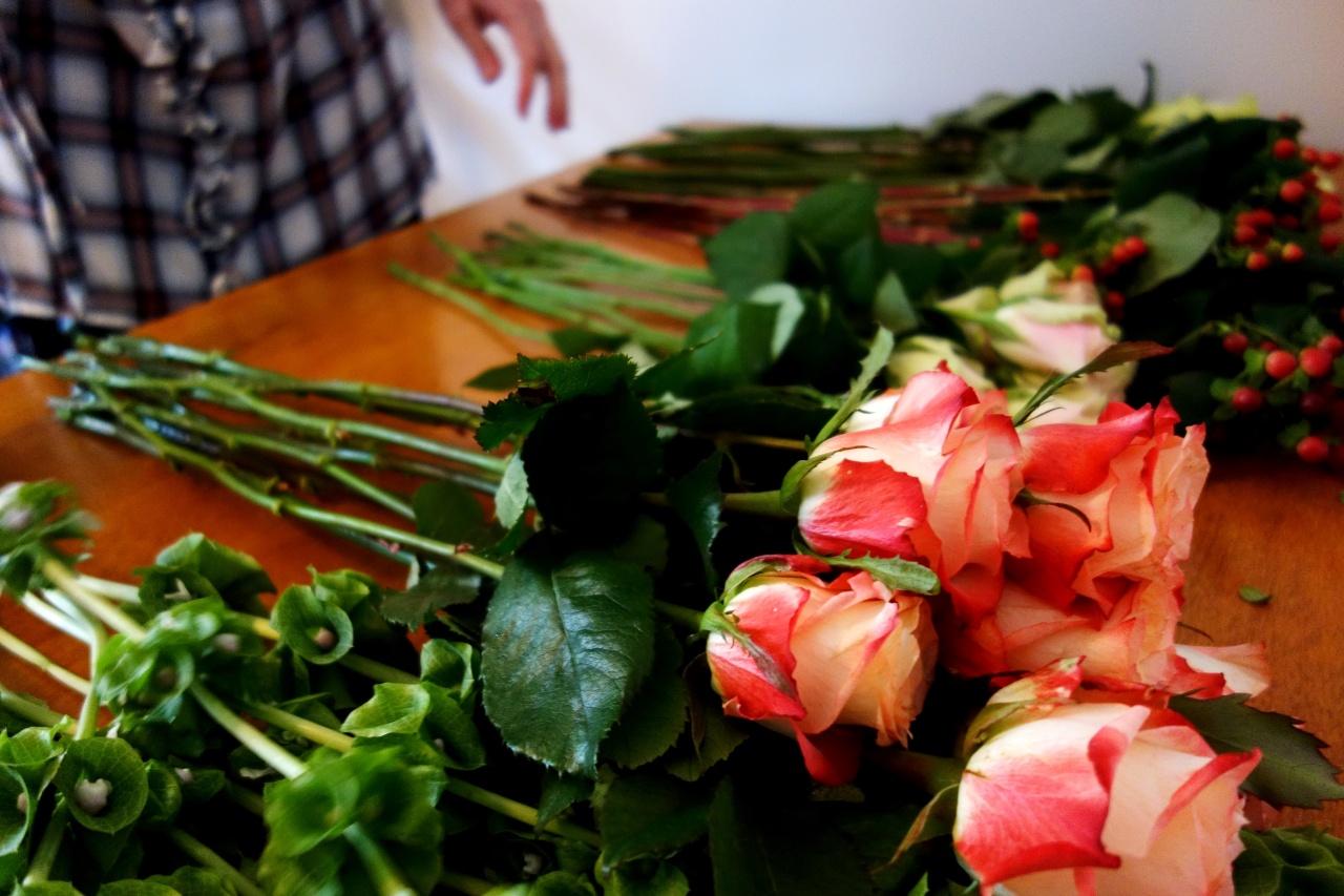Revue roses