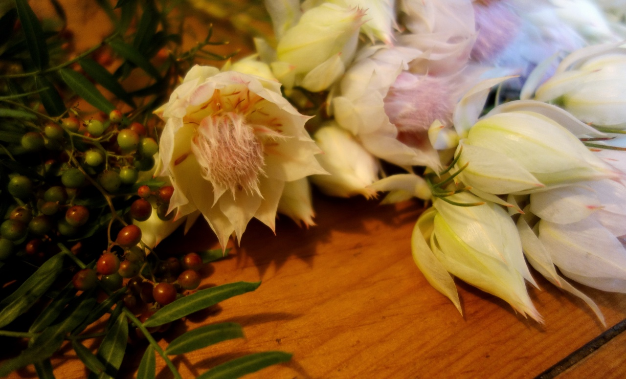 Blushing bride and peppercorn for bouquet