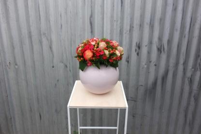 Sweet william & rose arrangement