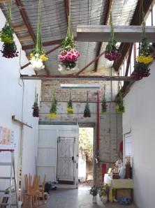 Chrysanthemum ceiling