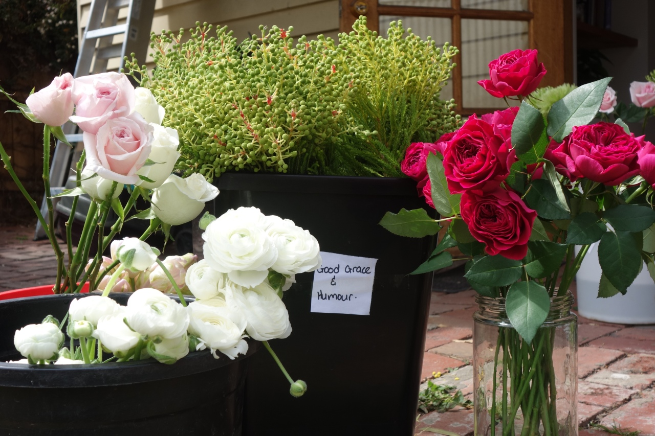 Flowers fresh from market