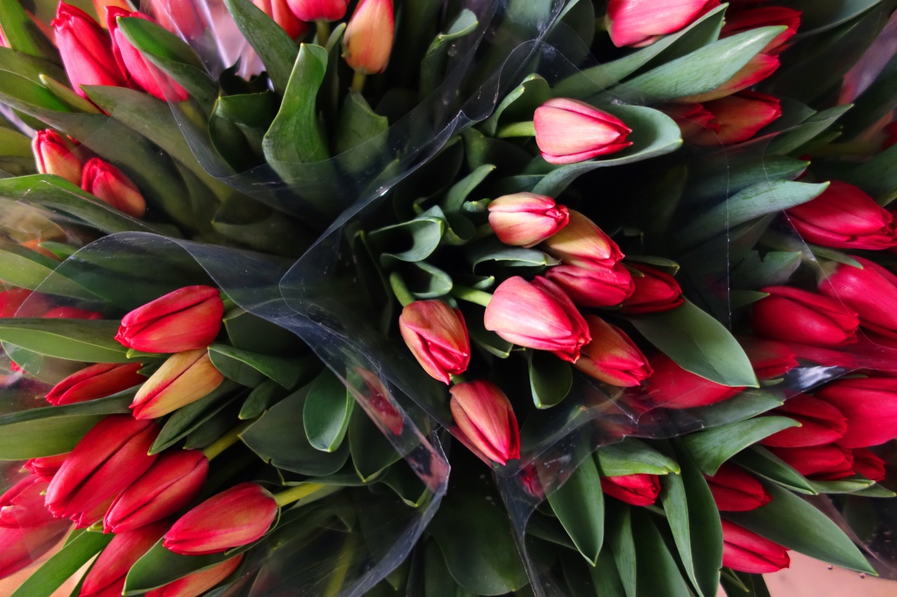 Tulips in vases ready for wedding