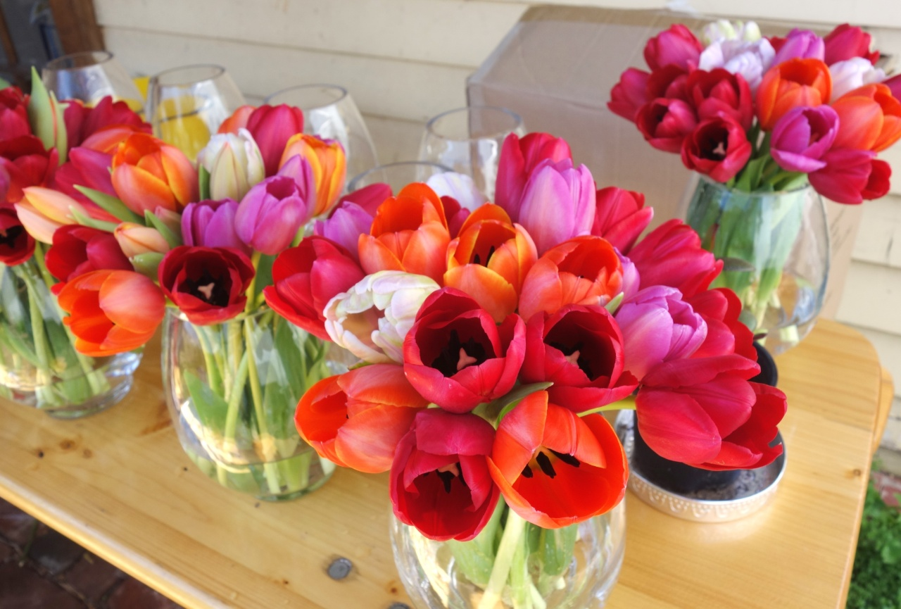 More tulips on table