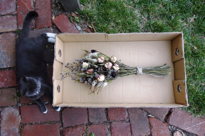 Spook with dried rose, stirlingia & melaleuca bouquet