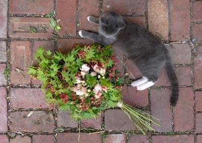 Spook with Japanese maple, spray rose & festival bush bouquet