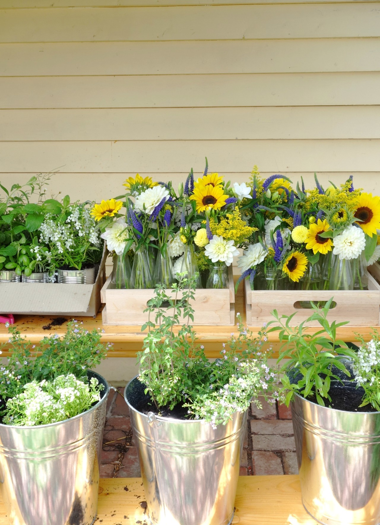More of the sunflowers and veronica table arrangements